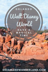 Walt Disney World #waltdisney #disney #orlando #florida #travel #thingstodo