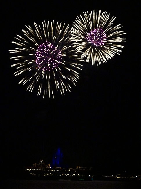 Walt Disney World Resort - Fireworks