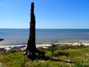 Florida - St. George Island