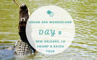 Day 8 - New Orleans, Louisiana - A Swamp And Bajou Tour #neworleans #jeanlafitte #swamp #bajou #travel #solo #thingstodo