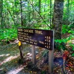 Indian Summer - New England - Things To Do In New Hampshire - White Mountains National Forest