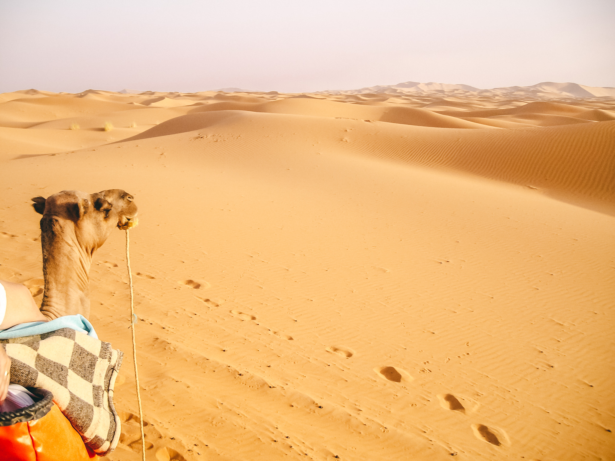 Merzouga desert is a must do activity while traveling Morocco. A three days trip from Marrakech or part of a road trip!