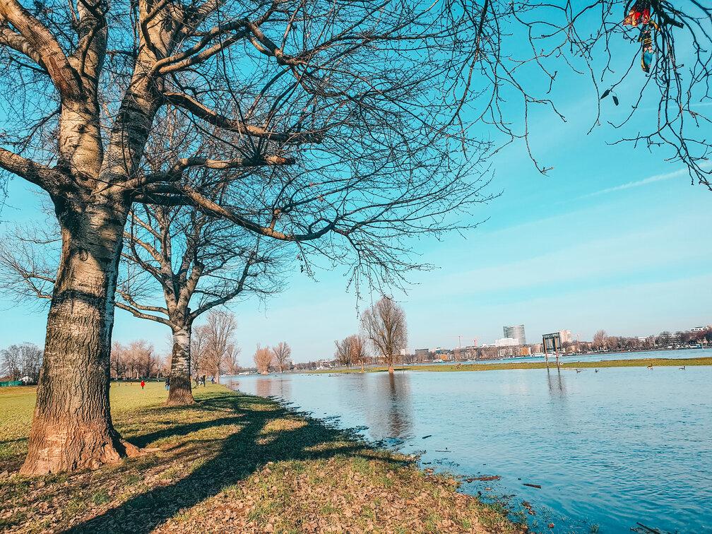 Wandering alongside the Rhine from Düsseldorf Oberkassel to Meerbusch. #travel #Germany